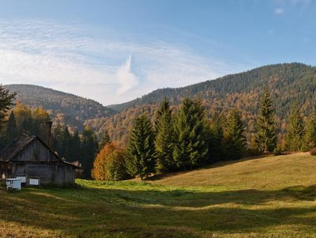 Viagem à montanha Golija | 29 a 31 de agosto | 39 euros