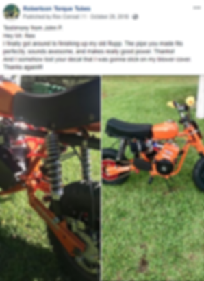 Briggs and Stratton Rupp MiniBike