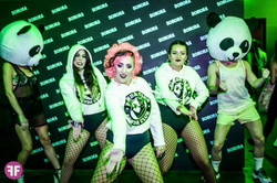 sonora fiesta panda