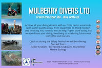 Mulberry Divers A5 Advert.jpg