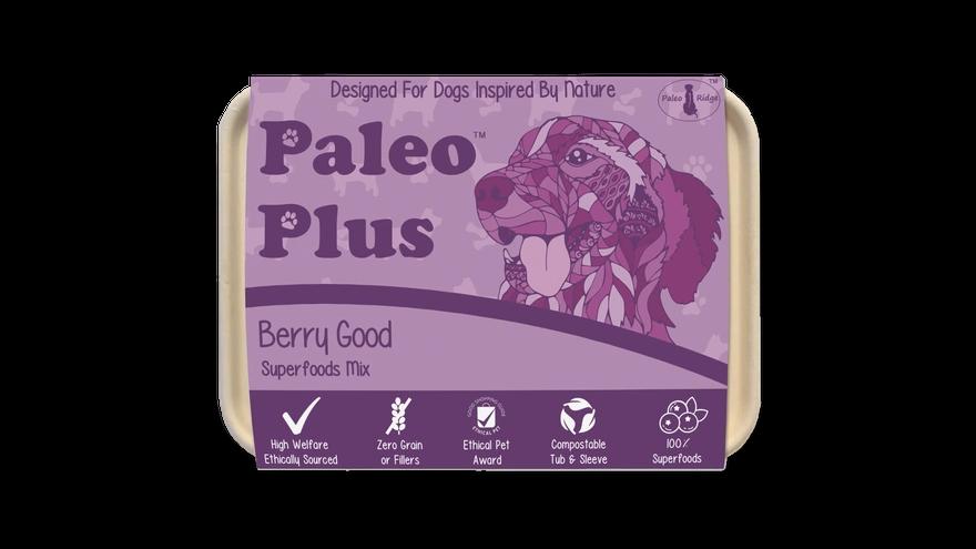 Paleo Plus Berry Good (500g)