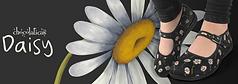 web logo daisy toets.png