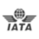 480px-Iata_official_logo_edited.png