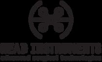 Head Instruments logo