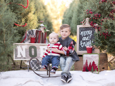 Christmas Minis 2016 @ Jordan Lake Christmas Tree Farm - Apex, North Carolina