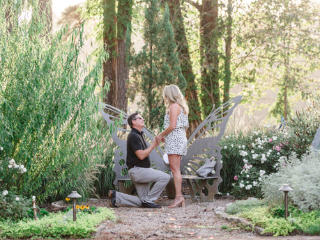 Jaclyn + Adam Proposal/Engagement @ The Pavilion at Angus Barn - Raleigh, North Carolina