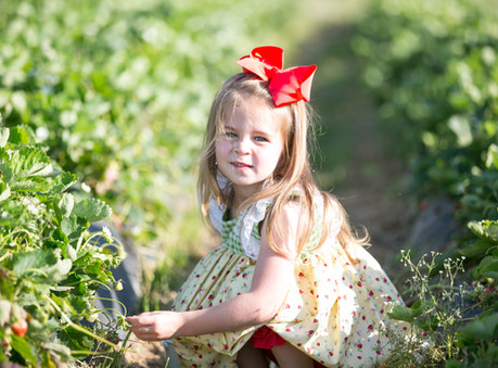 Caroline @ Dj's Berry Patch - Apex, North Carolina