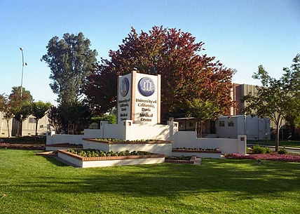 UCD Mont Orig.jpg