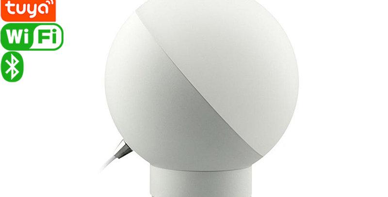 CR01 Tuya Smart Wi-Fi Table Lamp