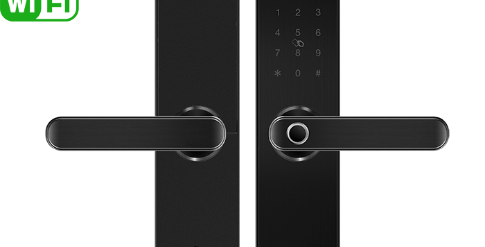 E202 Tuya Wi-Fi fingerprint smart lock