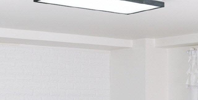 LED 로뎅 직사각 거실등 50W (블랙)