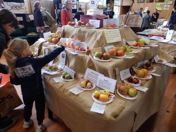 For website fruit trees heritage.JPG