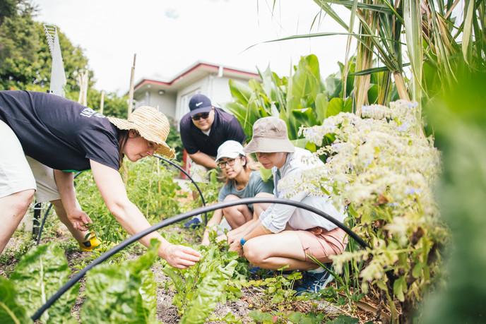 1712 Edible Gardening Session - IMG_6096