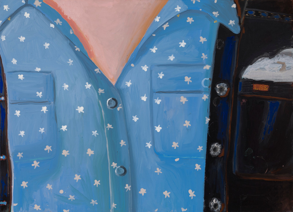 """Starry"", 2013"