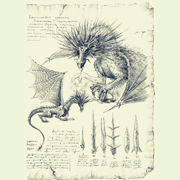 Ежеголовые драконы