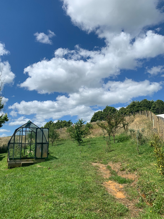 Orchard and Veggie Patch