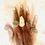 Thumbnail: Pyrite Ring w/ Silver & Rose Gold Copper Sz 9