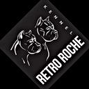 Логотип Retro Roche