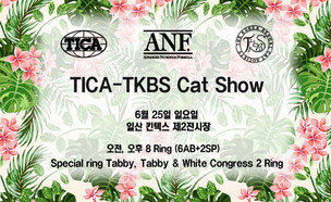 TICA - TKBS 4nd Cat Show