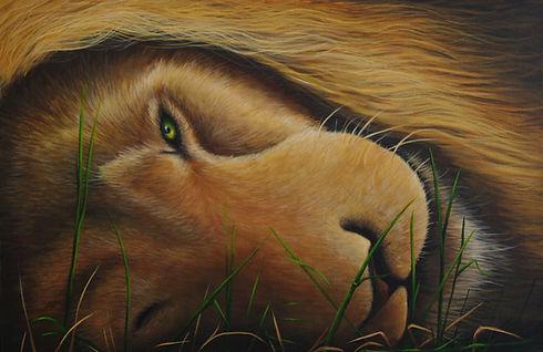 ''The lion sleeps tonight'' 16 x 24, Acr