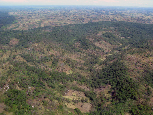 Deforestation in the Mau forest