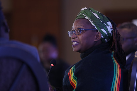 Why Uganda needs a Stella Nyanzi in Parliament