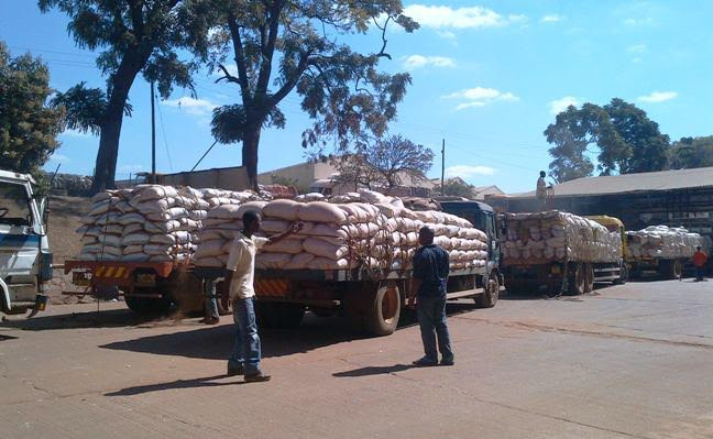 Trucks carrying purchased maize in Malawi. President Muluzi accused the IMF of pressuring Malawi to sell its own stores.