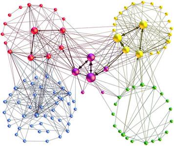 368. 個人と組織の発達に関する新たな理論モデル「ダイナミックネットワーク理論」