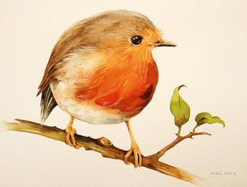 3639. 小鳥の清澄な鳴き声から