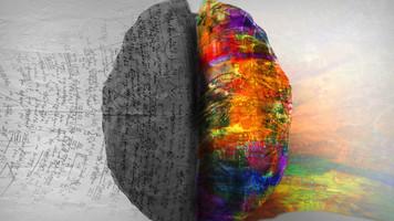 2854. 書くことと脳の可塑性