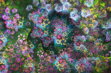 2056. 春の予感