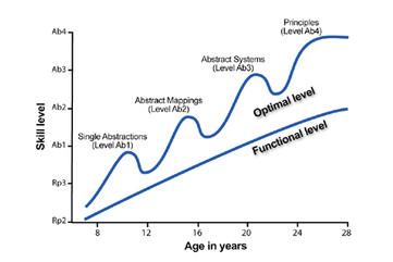 25. ダイナミックスキル理論における「最適レベル」と「機能レベル」とは?