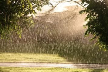 357. 天気雨からの教示:「等結果性」と「初期状態依存性」