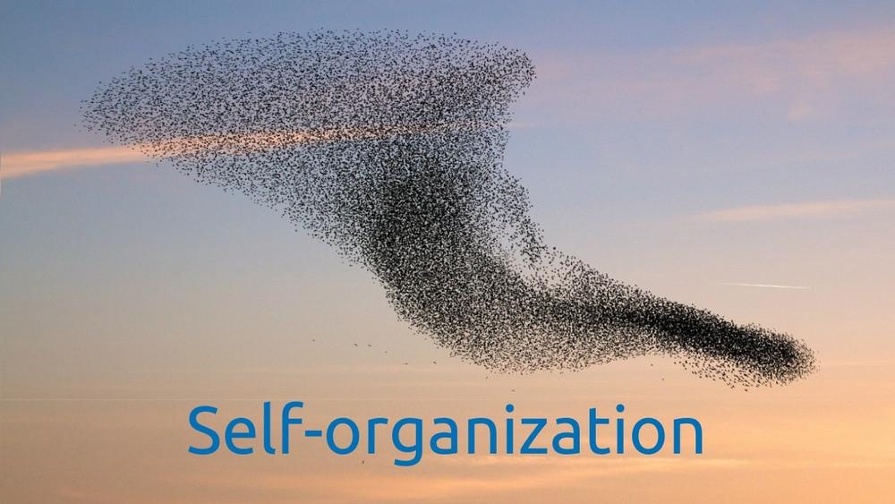 16. 自己組織化するスキル