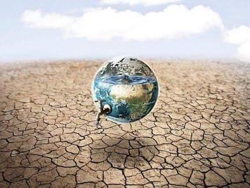 1194.『成人発達理論による能力の成長』:能力という生態系の危機