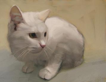 3277. 白い猫と遭遇する夢