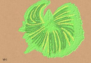 No.207 若草の命_Life of Fresh Grass