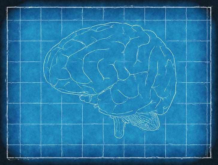 【PDF版翻訳書】心の隠された領域の測定:成人以降の心の発達理論と測定手法