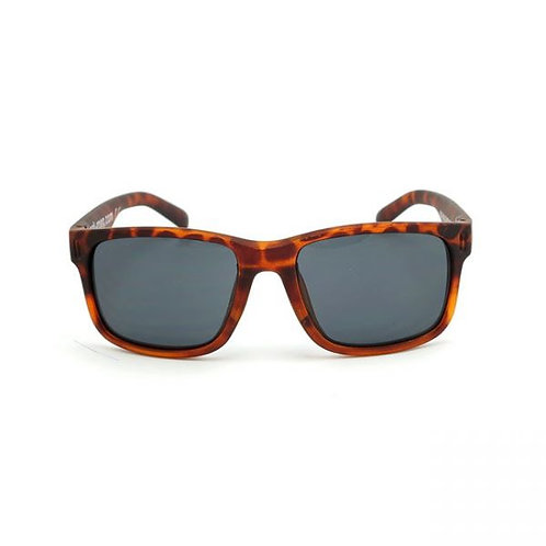 Roeg Billy Sunglasses l Toroise