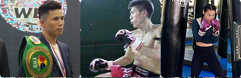 WBC Master.png