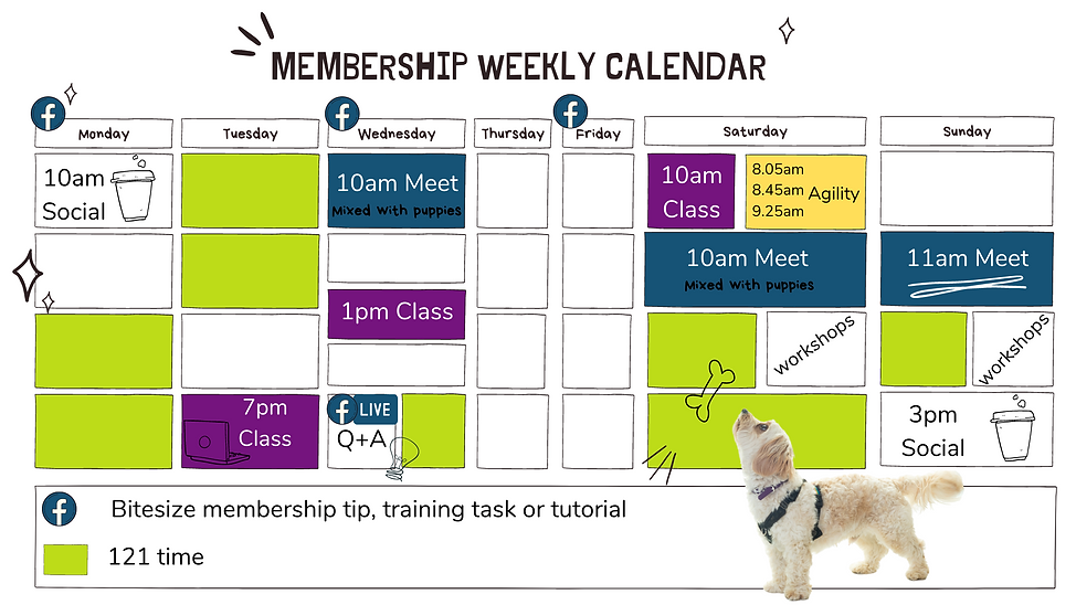 membership calendar (1).png