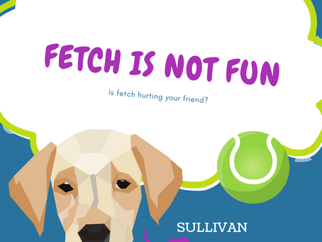 FETCH ISNT FUN