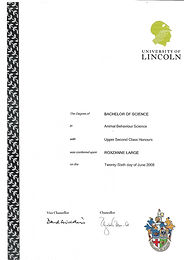 degree certificate.jpg