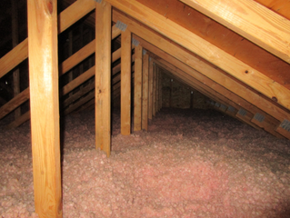 Inspect Your Attic Annually.