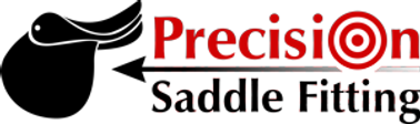 precision_saddle_fitting_1441822145__966