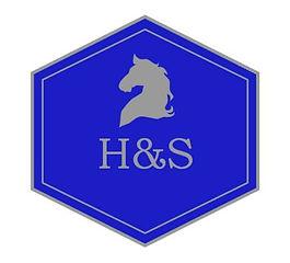 H&S Logo.jpg