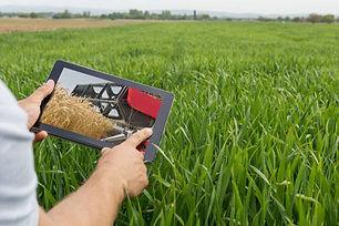 agro-business.jpg