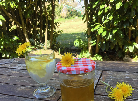 Miel de Diente de León