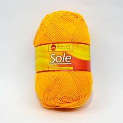 sole-2016.jpg