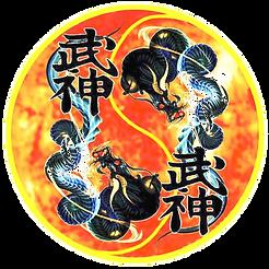 PT | Associação Portuguesa de Budo Taijutsu